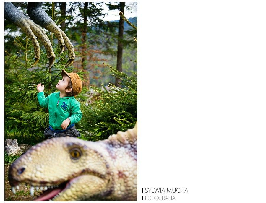 fot. sylwia mucha dinozaury